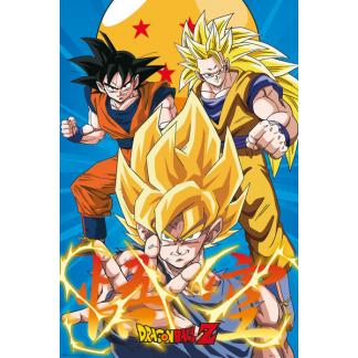 Dragon Ball Z: Goku - poster