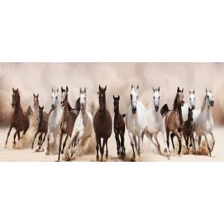 Glasschilderij Paarden