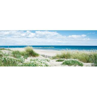 Glasschilderij Strand en duinen